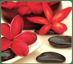 Alfombrilla Ecológica Flores Spa Fellowes