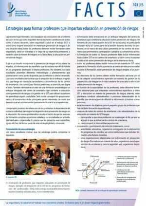 Estrategias para formar profesores que impartan educación en prevención de riesgos