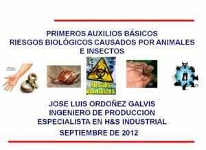 Primeros auxilios básicos. Riesgos biológicos causados por animales e insectos