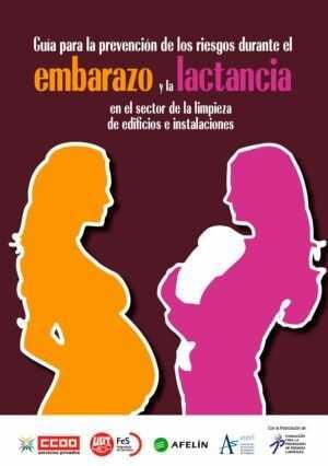 Guía para la prevención de los riesgos durante el embarazo y la lactancia